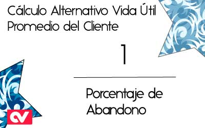 Cálculo-Alternativo-Vida-Util-Promedio-Cliente
